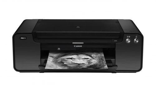 Fotodrucker PIXMA PRO-1