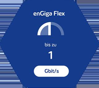 enGiga Flex