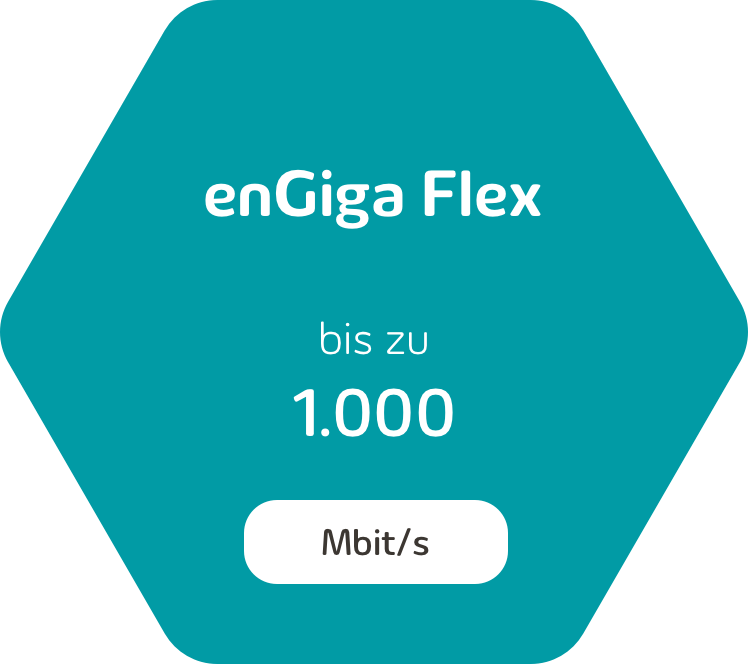 enGiga Flex