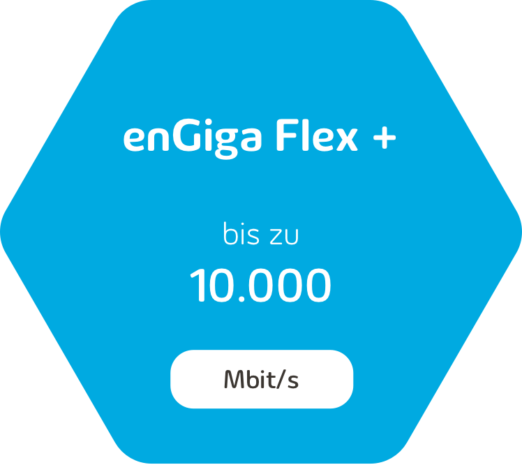 enGiga Flex+