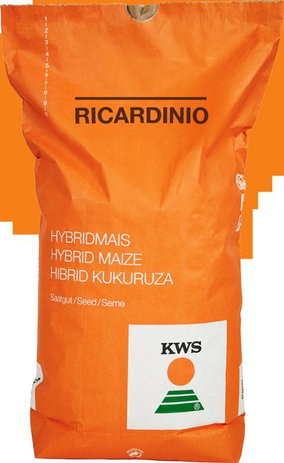 Ricardinio